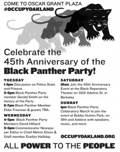 Black Panther 45th Anniversary